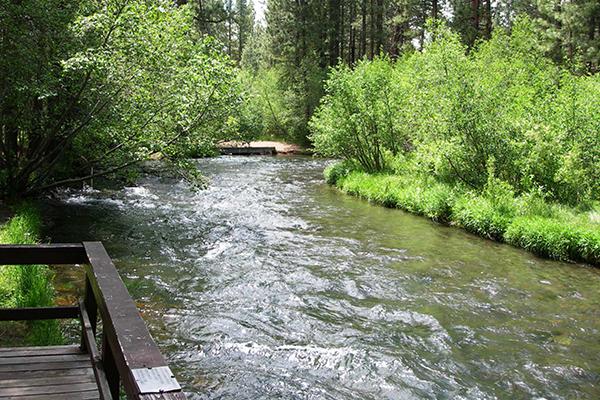 Worst Camping Trip Review Of Hat Creek Resort Rv Park Old Station Ca Tripadvisor