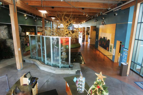 Turtle Bay Exploration Park And Museum