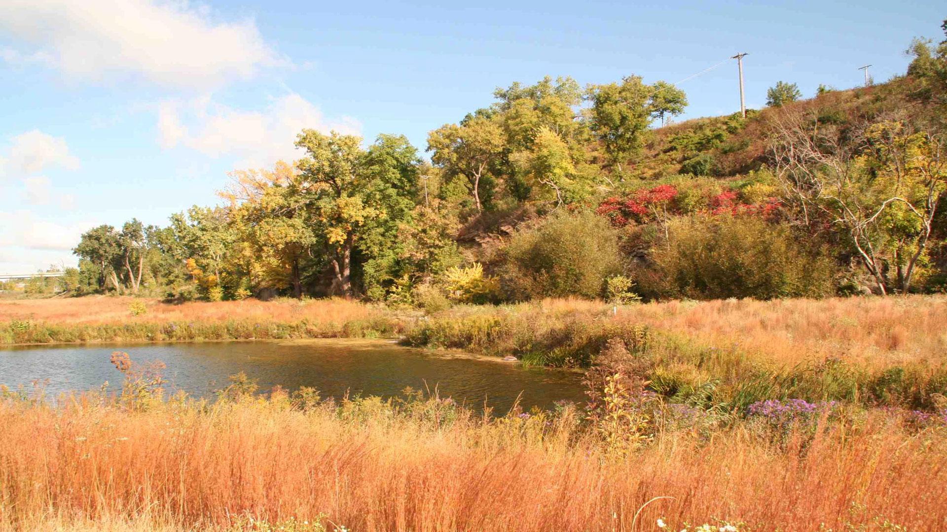 Bruce Vento Nature Sanctuary Park