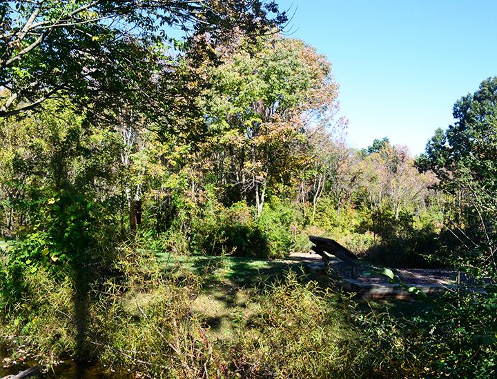 Ohio State Park | Caesar Creek
