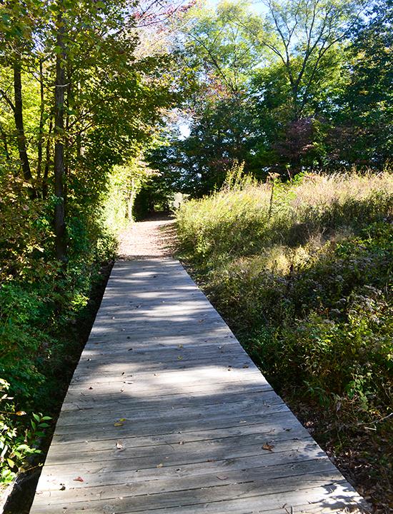 Wooden Bridge at Caesar Creek State Park