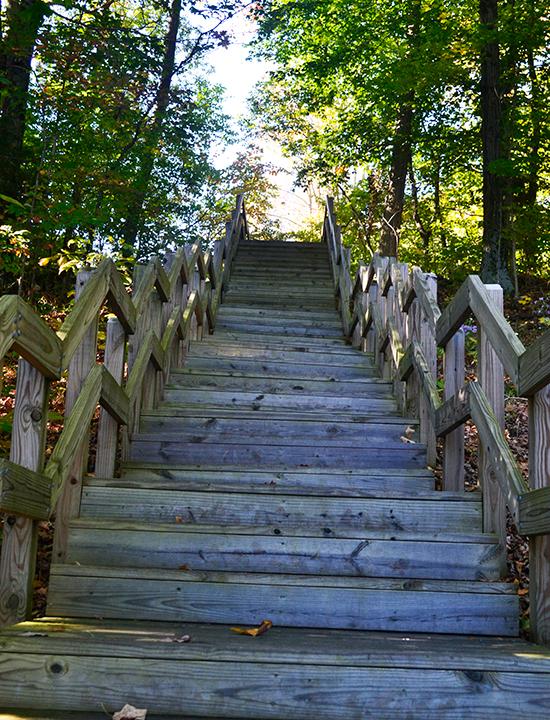 Stairs at Caesar Creek State Park