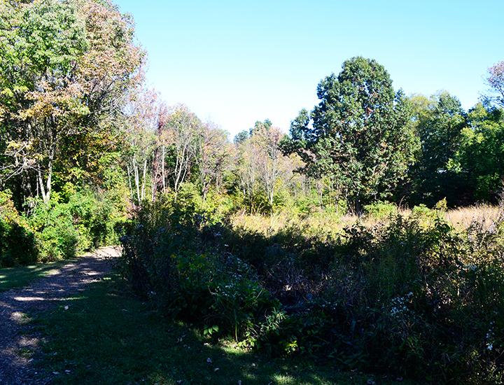 Hiking Trails near Cincinnati and Dayton