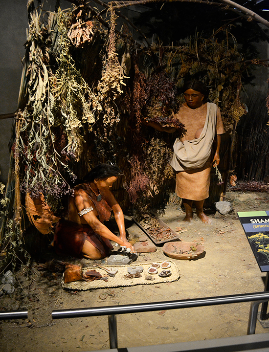 Native American Exhibit | Fort Ancient Earthworks & Nature Preserve