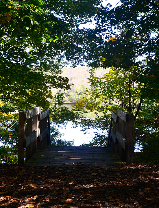 Stairs down to dock | Caesar Creek State Park