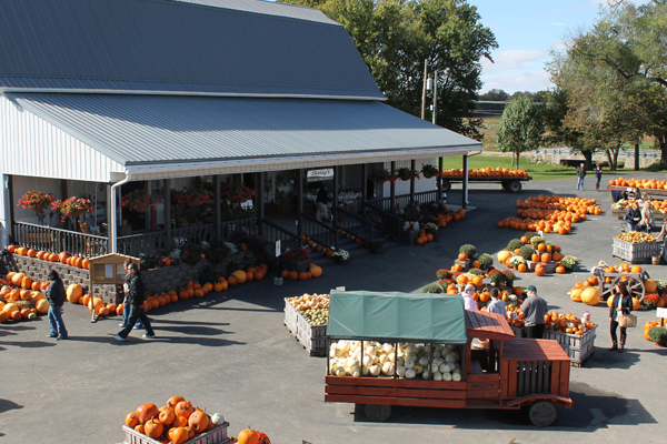 Skelly's Farm Market