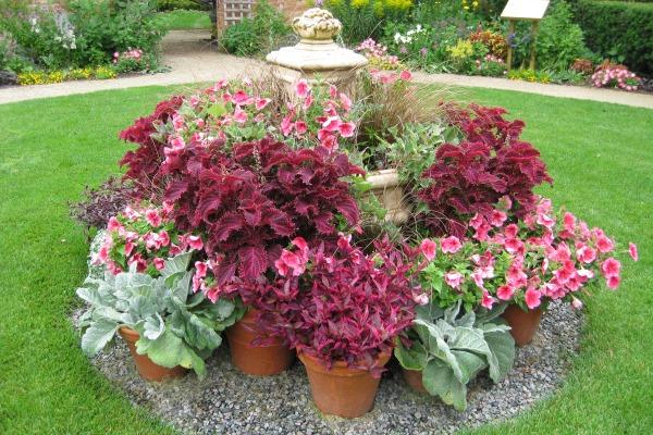 Spring Garden Symposium