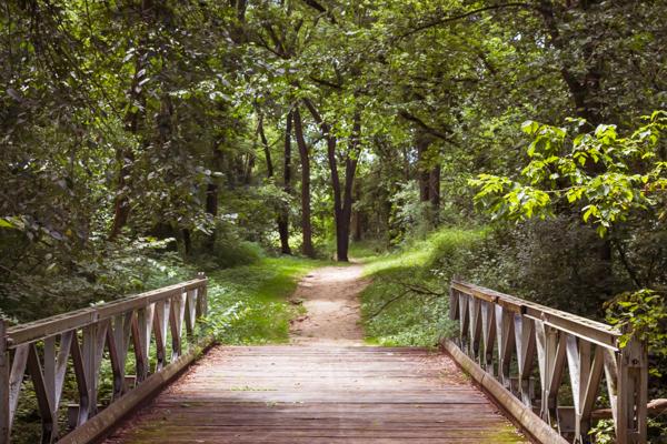Janesville Trail System