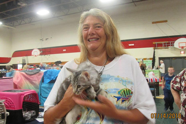 Allbreed Cat Show