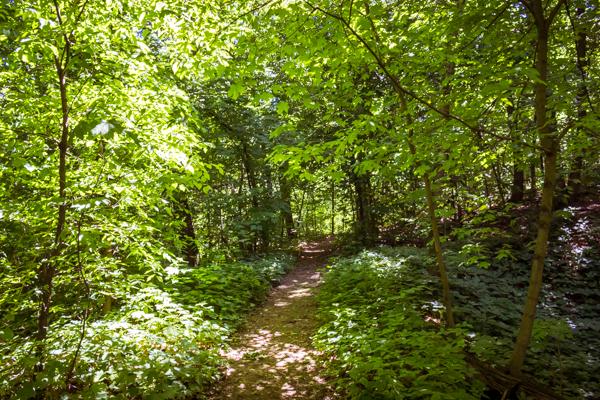 Walk Across Rock County Hike 1