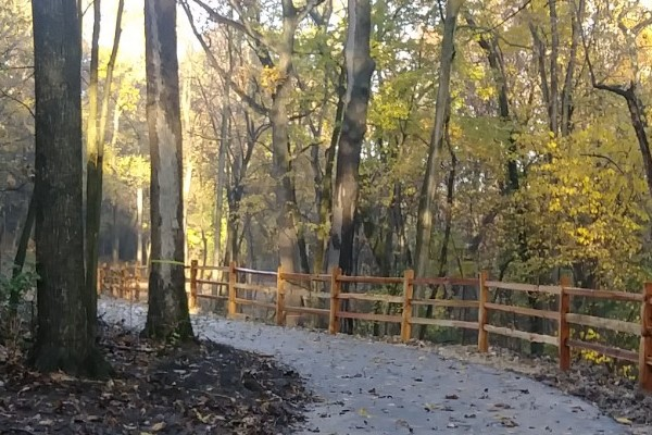 Sheiffer Park