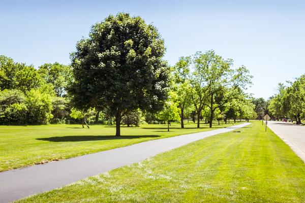 Crowd-Free Fun: Janesville Trails