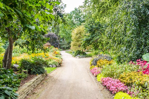 Crowd-Free Fun: Learn to Garden