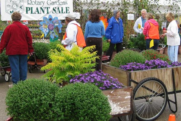 Spring Plant Sale - Online Version