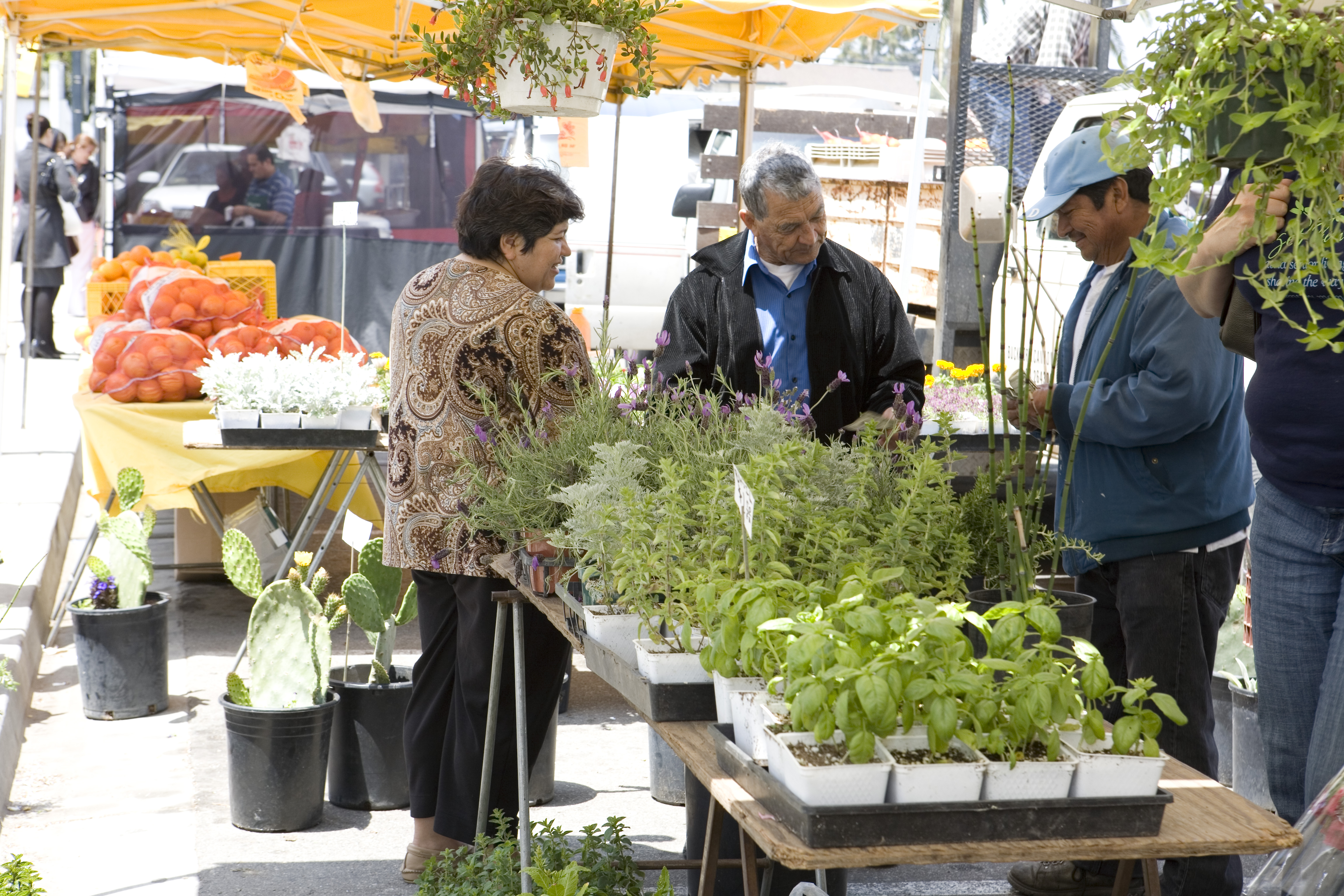 Downtown Oxnard Farmers Market