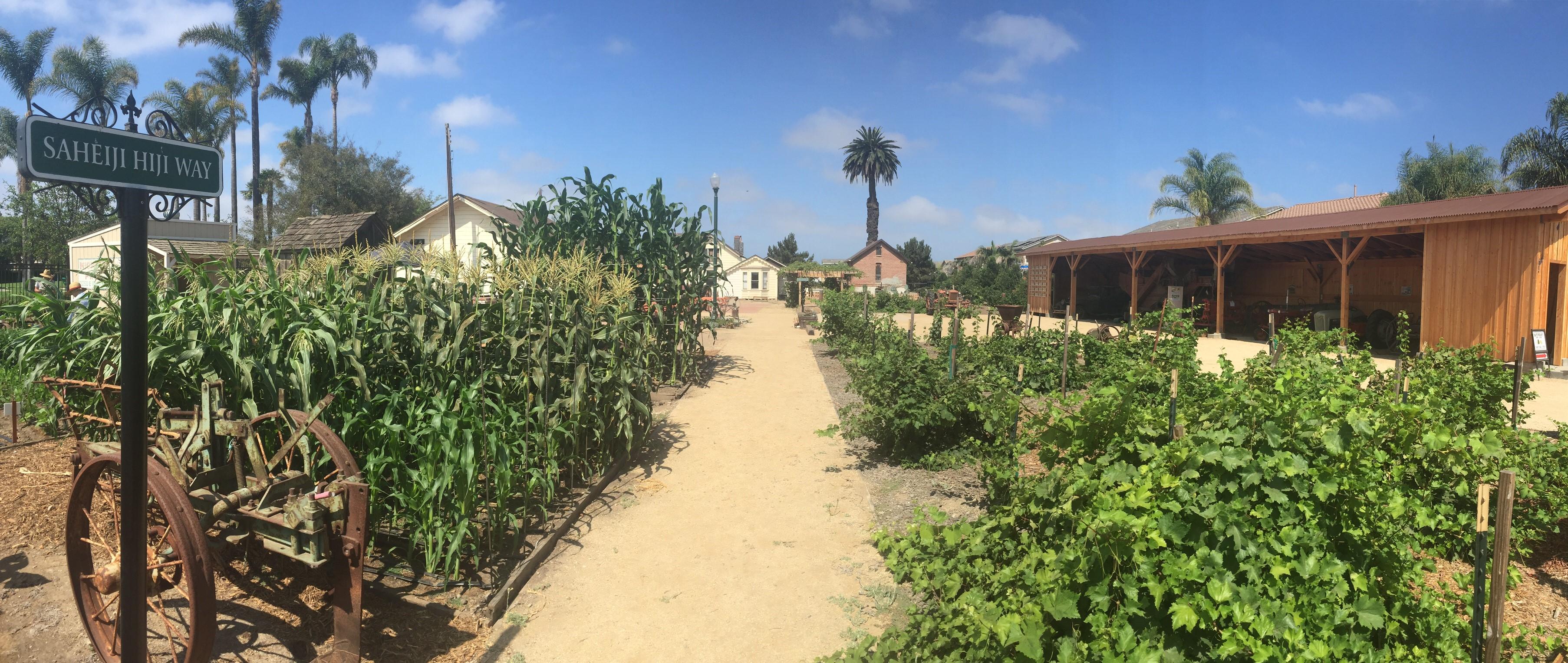 Ventura County Farm Day at Oxnard Historic Farm Park