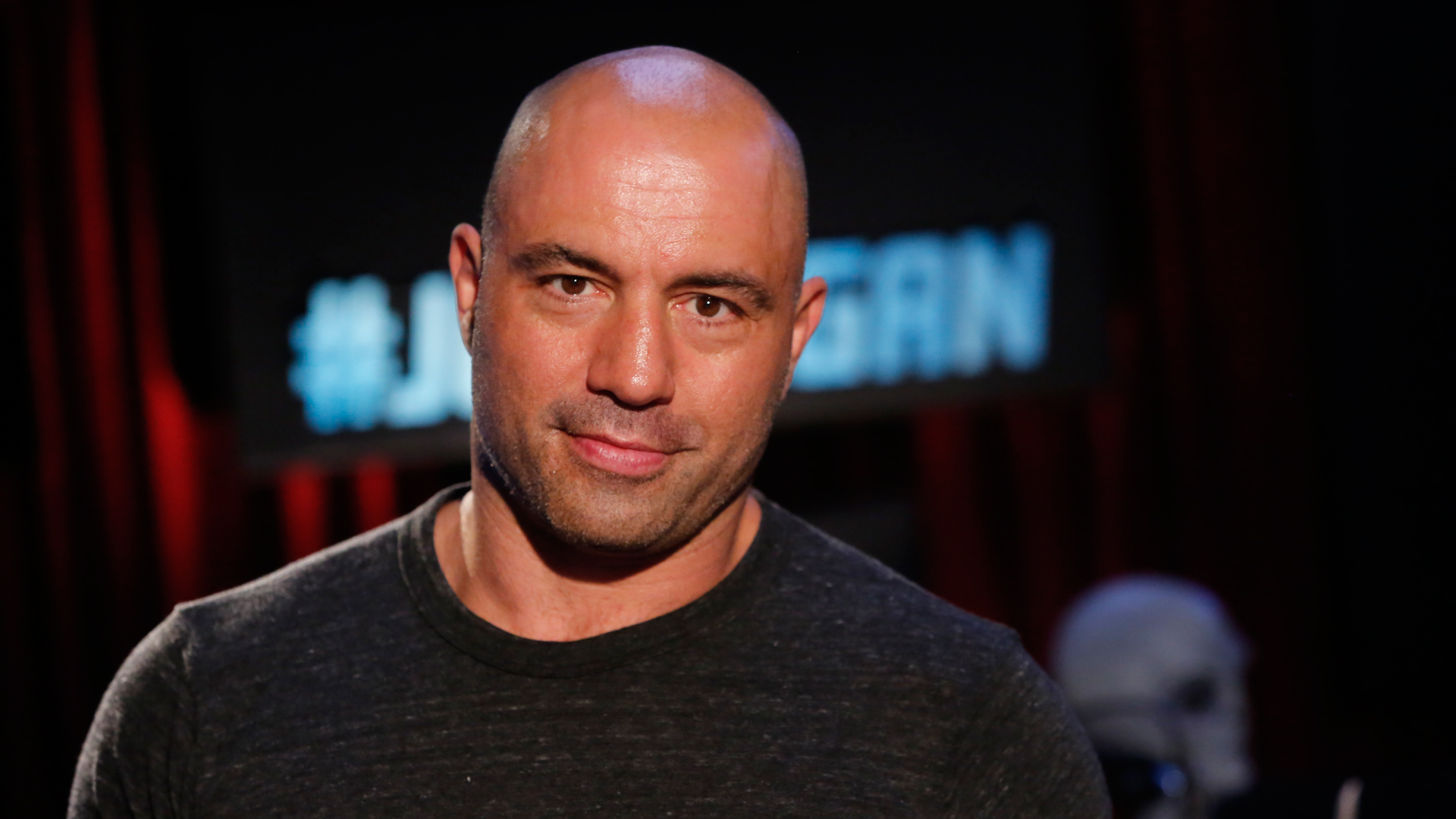 Joe Rogan at Levity Live
