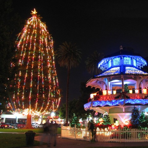 Oxnard Tree Lighting