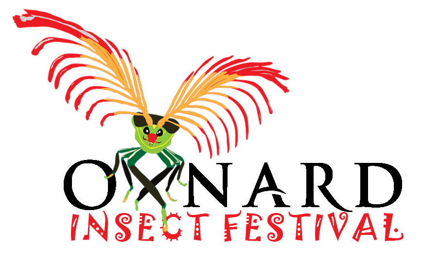 Inaugural Insect Festival