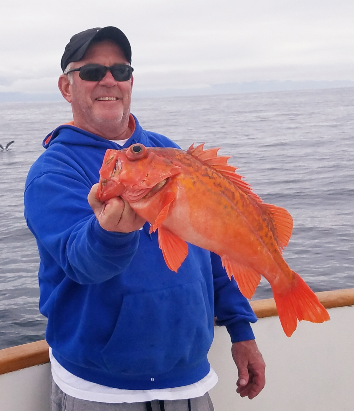 Channel Islands Sportfishing