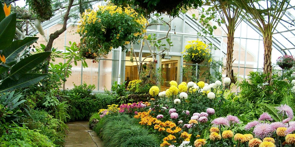 Test B Oak Park Conservatory