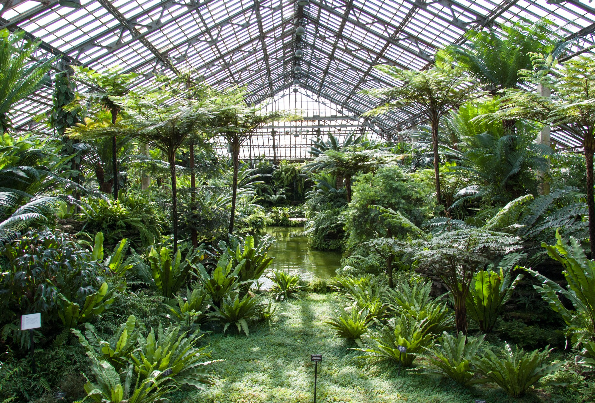 Test B Garfield Park Conservatory