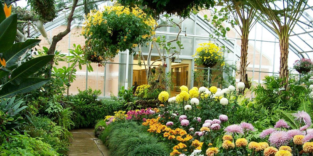 Oak Park Conservatory